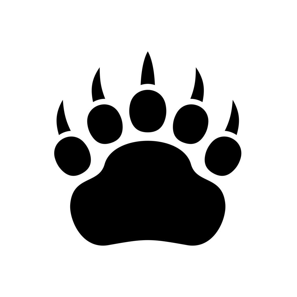 northern California Black Bear Hunting Guide